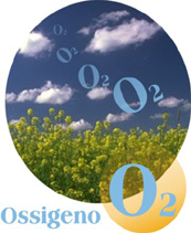 Risultati immagini per ossigeno
