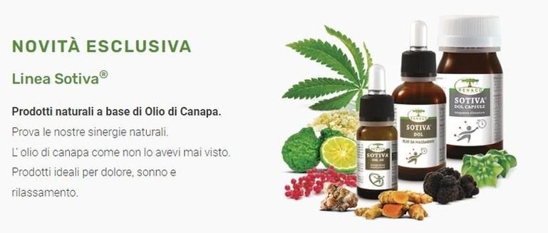 estratto di caffè verde di labiri